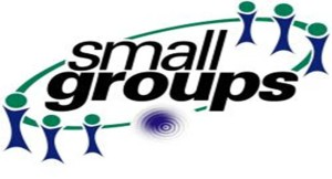 small_group20logo
